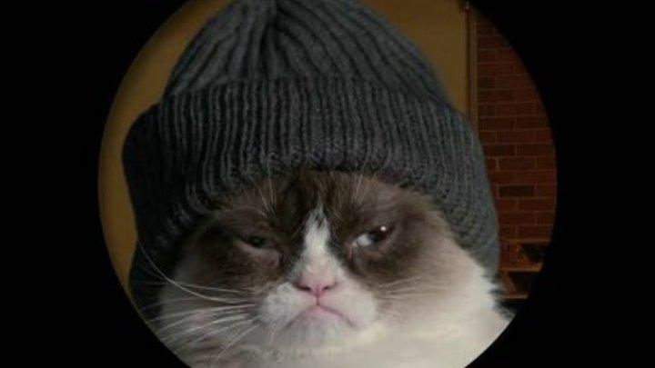 Худшее Рождество Сердитой кошки (США 2014 HD) Комедия, Приключения, Семейный