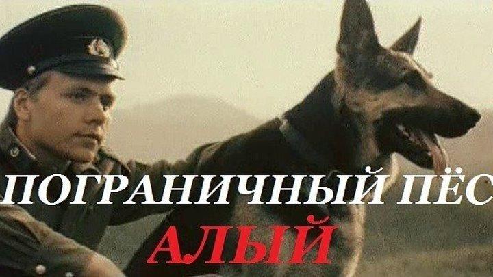 """""""Пограничный ПЁС АЛЫЙ"""" (1979)"""