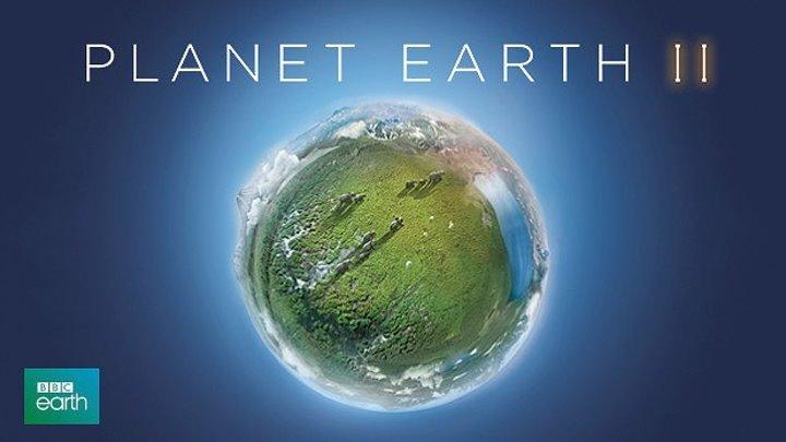 BBC. Планета Земля II. 6-ая серия «Города». (2016) Документальный сериал