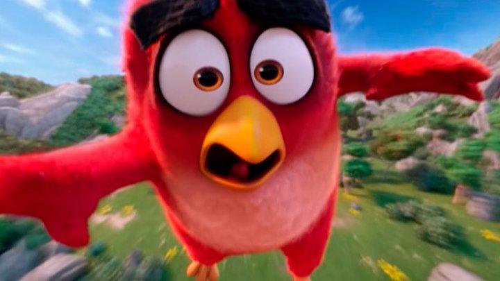 «Angry birds в кино»: Всероссийская телепремьера на СТС