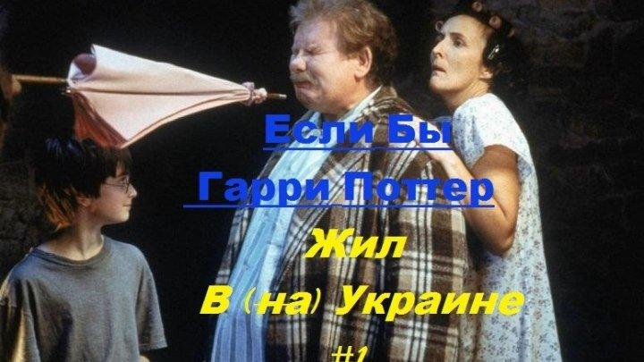 Если бы Гарри Поттер жил вна Украине #1.1 Переозвучка Дмитрий Донской