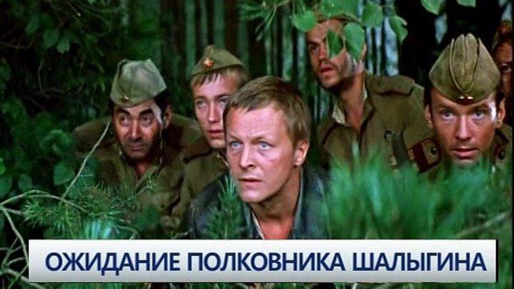 Ожидание полковника Шалыгина Фильм, 1981
