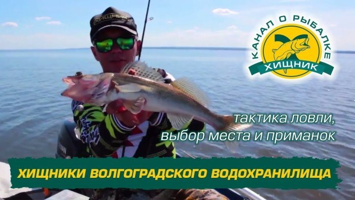 Хищники Волгоградского водохранилища