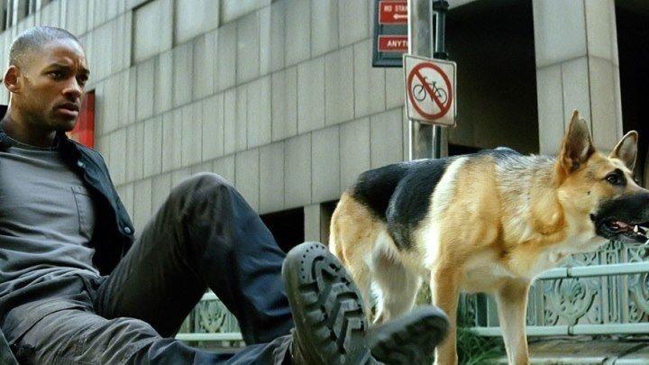 Я - легенда HD(ужасы, фантастика, драма)2008