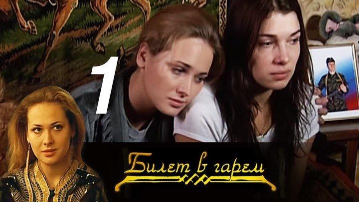 Билет в гарем. Серия 1 (2006) Россия драма