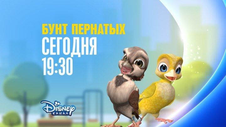 """""""Бунт пернатых"""" на Канале Disney!"""