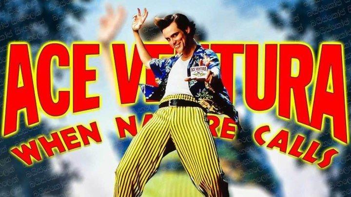 Эйс Вентура 2 Когда зовёт природа (1995) Комедия, детектив, приключения WEB-DL-720p DUB (с DVD) Джим Керри, Иэн МакНис, Саймон Кэллоу, Мейнард Эзиаши, Боб Гантон, Софи Оконедо