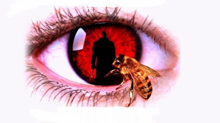 Кэндимэн (мистический триллер Бернарда Роуза по рассказу Клайва Баркера с Тони Тоддом и Вирджинией Мэдсен) | США-Великобритания, 1992
