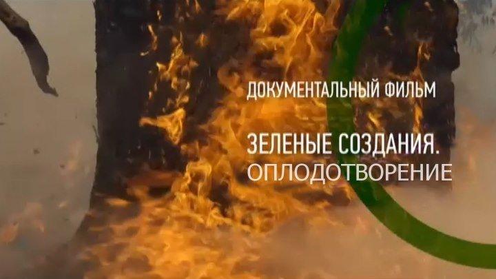 Зелёные создания 3 серия Оплодотворение (2016)