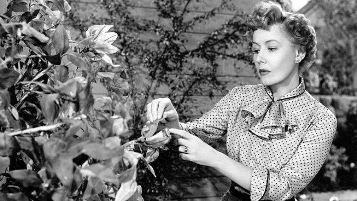 It Grows On Trees 1952 - Irene Dunne, Dean Jagger, Richard Crenna, Joan Evans