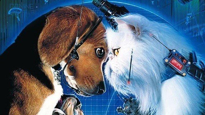 Кошки против собак - Фэнтези / комедия / семейный / боевик / США, Австралия / 2001