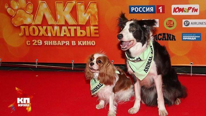Собаки из фильма «Ёлки лохматые». Планета собак 🌏 Моя Планета