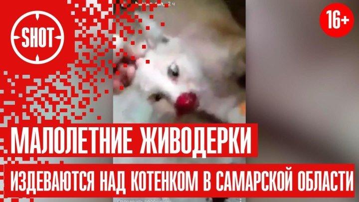 Малолетние живодерки издеваются над котенком в Самарской области ВИДЕО СТРОГО 16+