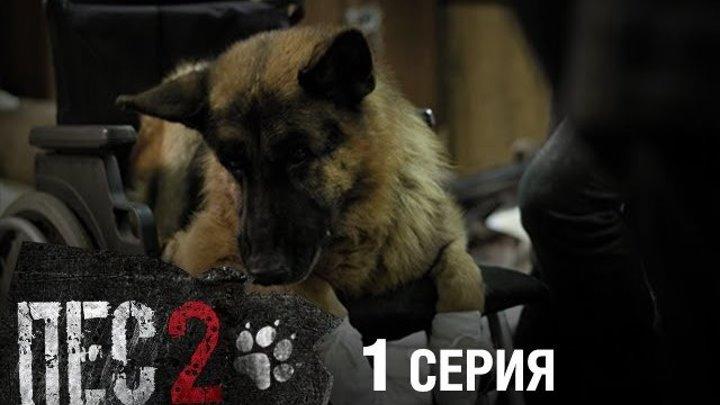 Сериал ПЕС 2 сезон 1 серия 2017 720р НТВ