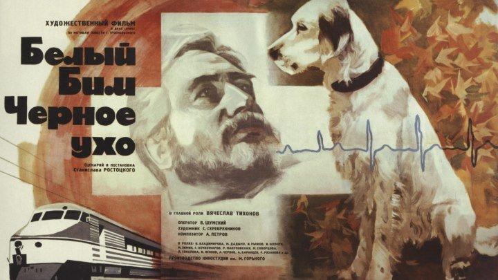 Белый Бим Черное ухо (1976) драма