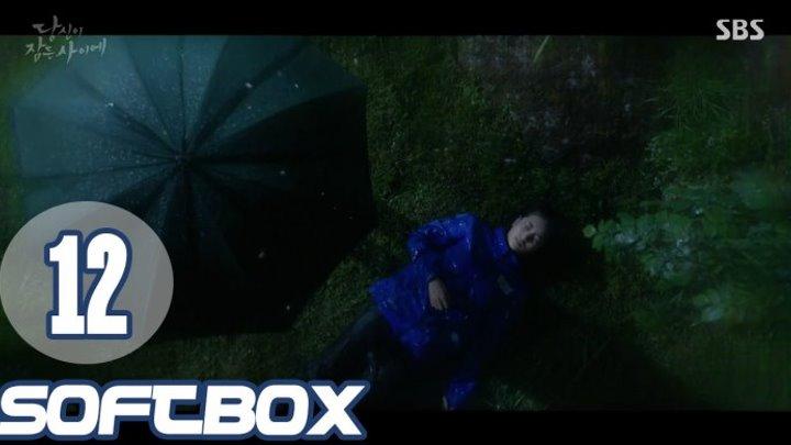 [Озвучка SOFTBOX] Пока ты спала 12 серия