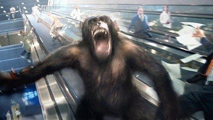 Восстание планеты обезьян Фантастика, Боевик
