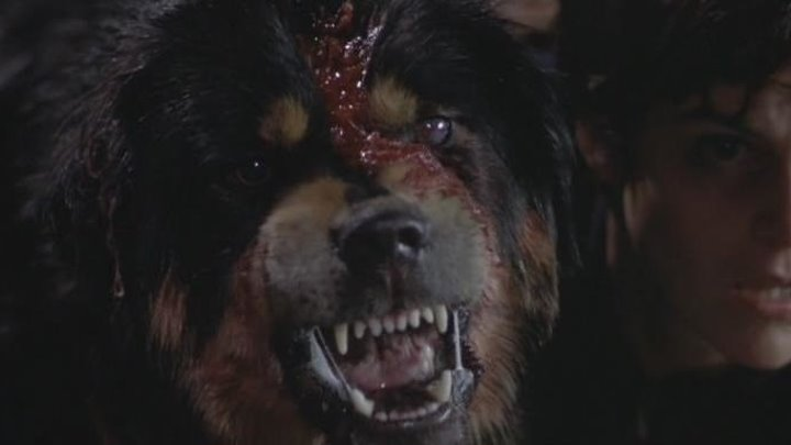 Лучший друг человека (фантастический триллер с Элли Шиди и Лэнсом Хенриксеном)   США, 1993
