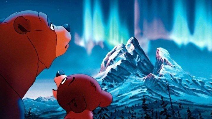 Братец медвежонок. приключения семейный фэнтези