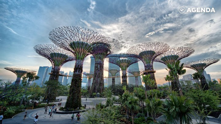Сад в Сингапуре