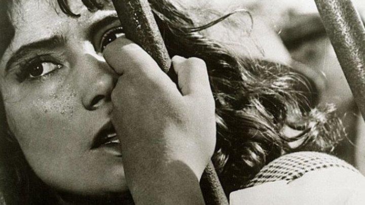 Летят журавли: 1957