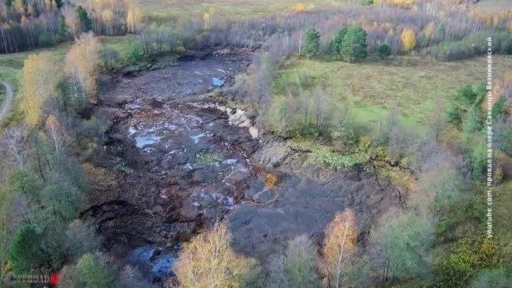 Во Владимирской области исчезло лесное озеро