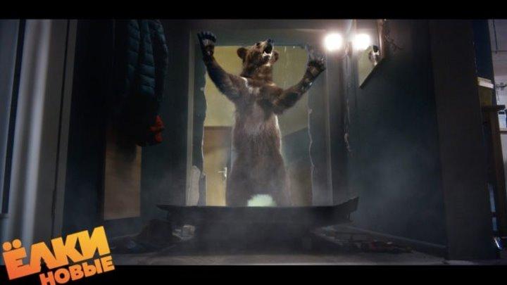 Что делать, если встретил медведя-шатуна?