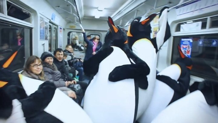 Пингвины в метро
