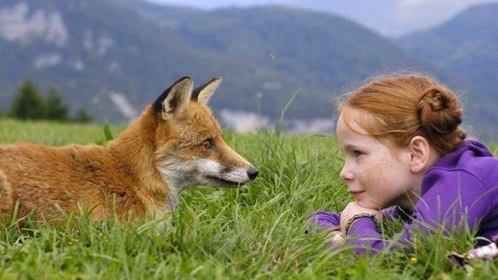 Девочка и лисёнок. 2007. Драма.Приключения.Семейный.