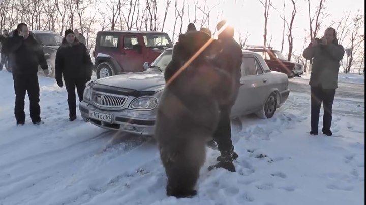 Только Американцам не показывать! Медведь Яшка
