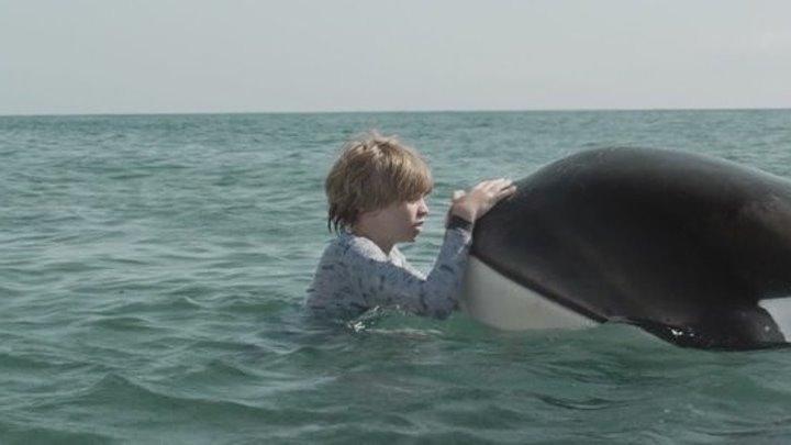 Маяк китов (2016) Драма