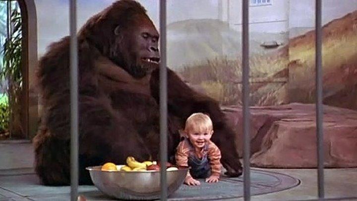 Младенец на прогулке, или Ползком от гангстеров (1994)
