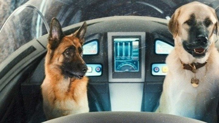 Кошки против собак: Месть Китти Галор. Комедия боевик семейный.