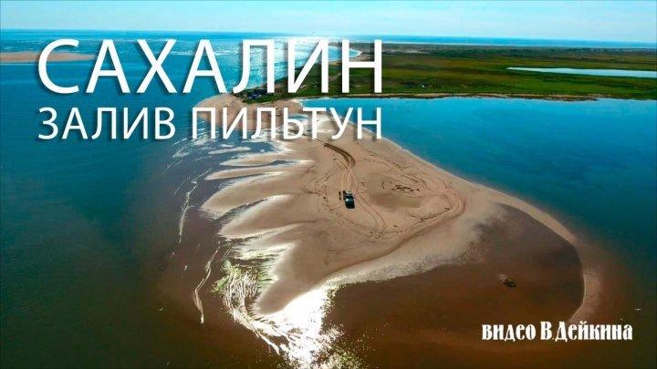 Залив Пильтун. Сахалин