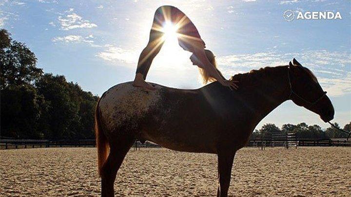 Йога на лошадях