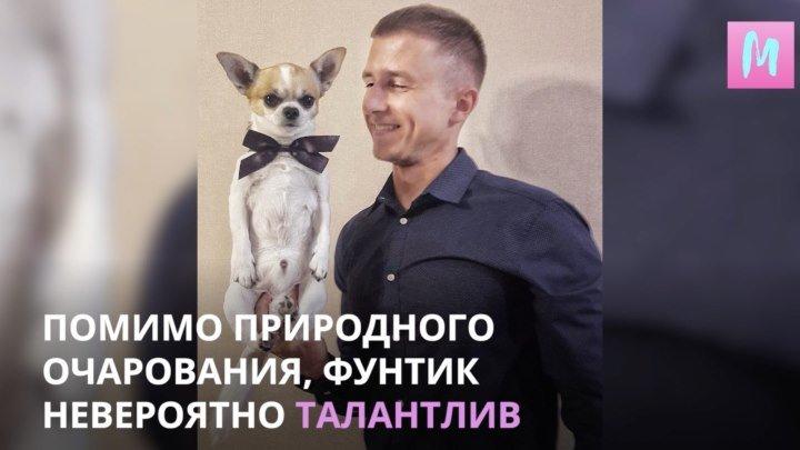 Фунтик Владимирович