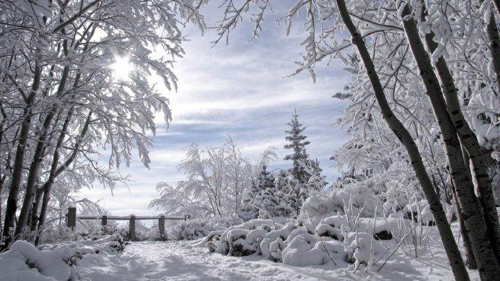 Юрий Лоза Зима