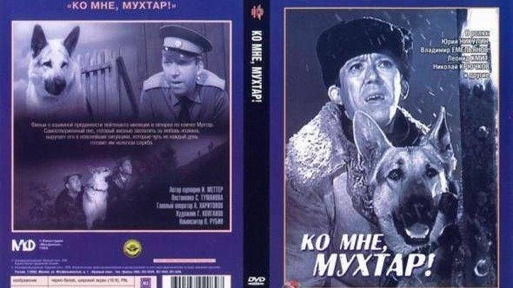 Драма-Ко мне, Мухтар!.1964. В день Рождения Никулина Ю.В.