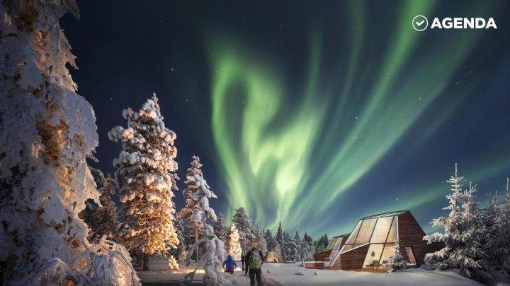Парк с видом на полярное сияние