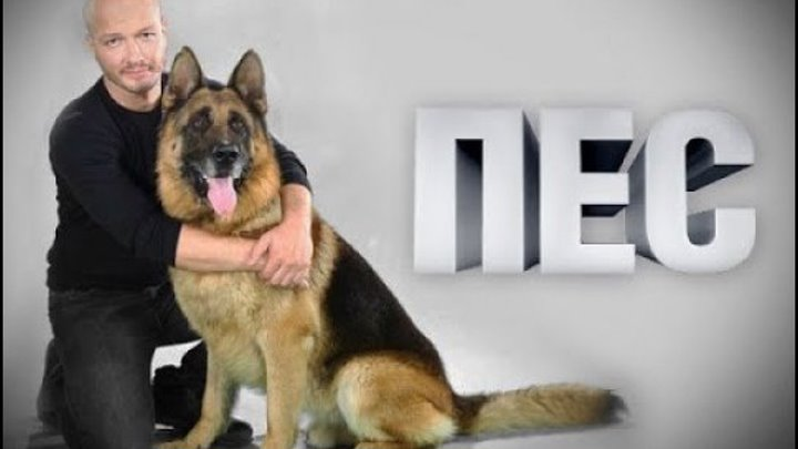 русский детективный сериал ПРО МЕНТОВ - все серии (1 - 20) весь первый сезон