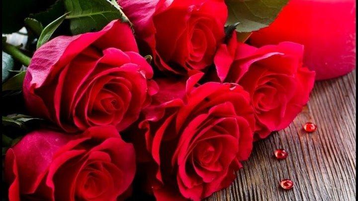 Нежная песня поздравления с днем рождения и много роз!!!