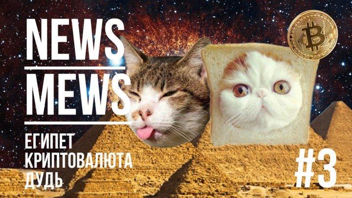 NEWS MEWS #3. Ежегодная пресс-конференция
