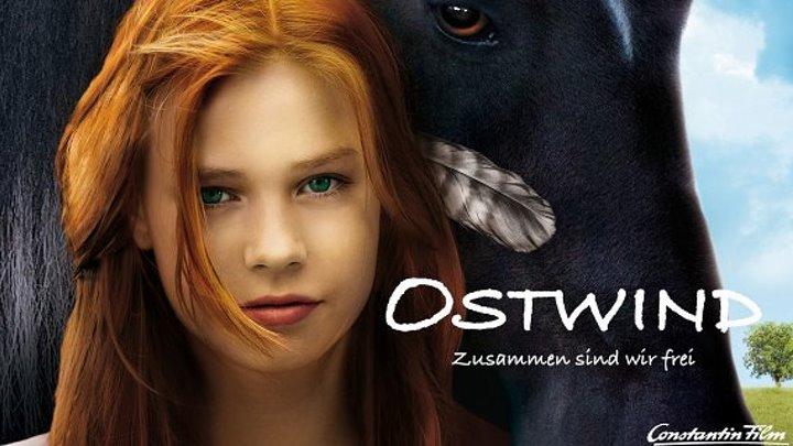 Восточный ветер (Германия 2013 HD) Семейный, Приключения, Драма