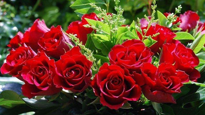 Розы для тебя _ Самые красивые розы для тебя