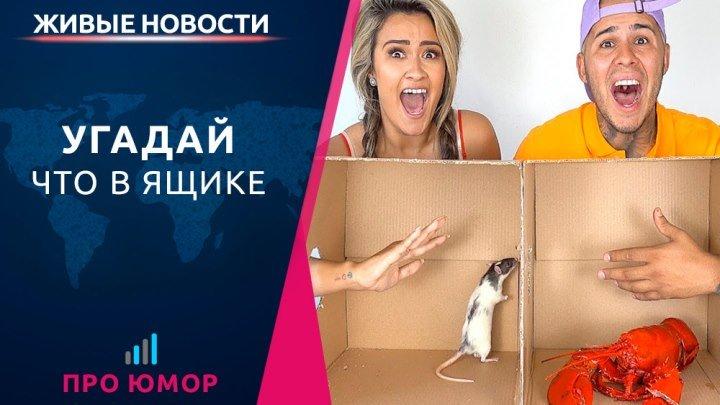 Угадай что в ящике
