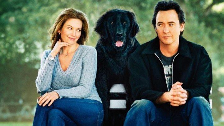 Любовь к собакам обязательна HD(мелодрама, комедия)2007