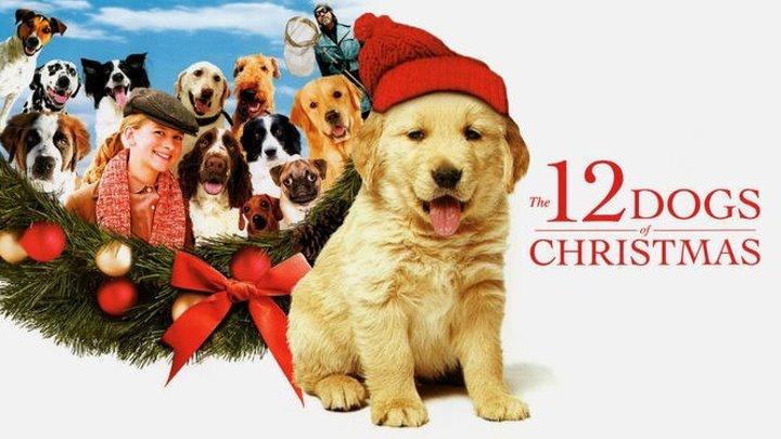 12 рождественских собак (США 2005) Семейный, Новогодний фильм, Комедия ツ