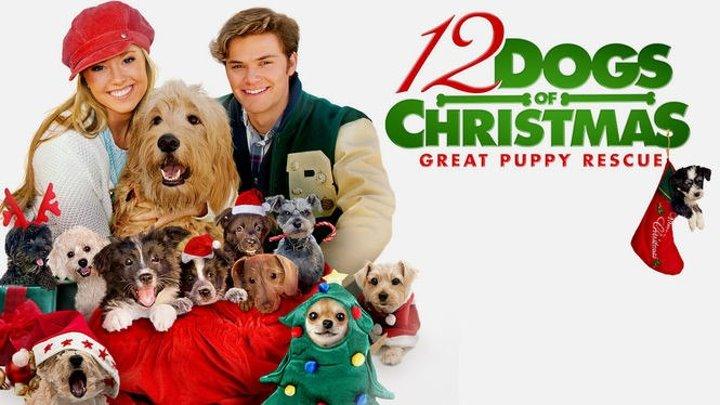 12 рождественских собак 2 (2012) Семейный, Новогодняя комедия ツ