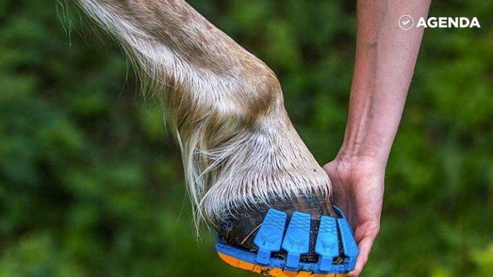 Пластиковые подковы для лошадей