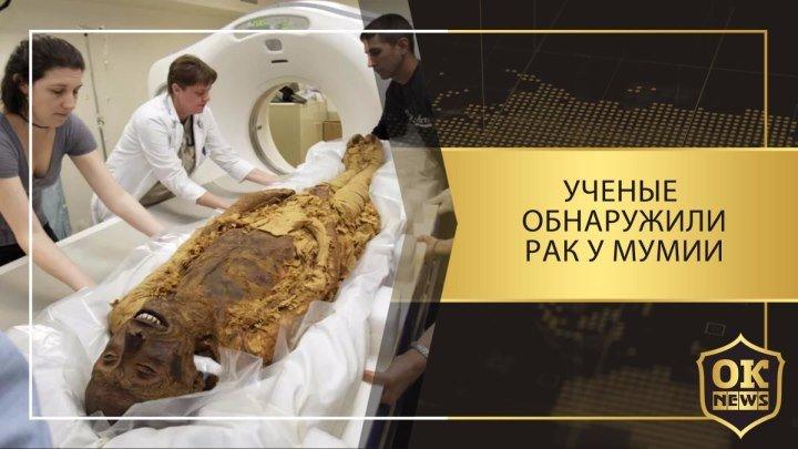 Ученые обнаружили рак у мумии